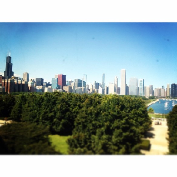 Chicago Skyline seen from the Museum window